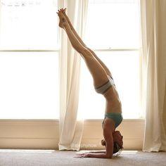forearm stand #yoga