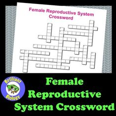 Crosswords are a great way to reinforce terminology and vocabulary associated…