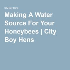 Making A Water Source For Your Honeybees | City Boy Hens