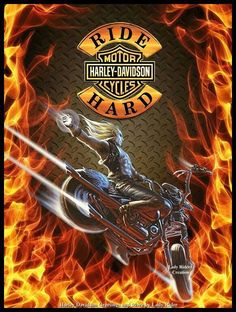 Harley Davidson Events Is for All Harley Davidson Events Happening All Over The world Harley Davidson Quotes, Harley Davidson Tattoos, Harley Davidson Pictures, Harley Davidson Wallpaper, Motor Harley Davidson Cycles, Harley Davidson Chopper, Harley Davidson Motorcycles, Steve Harley, Harley Davidson Merchandise