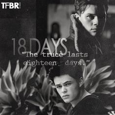 'The truce lasts eighteen days' TFBR: | Fan Site |