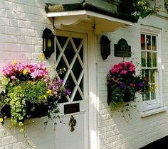 Window boxes with no windows!