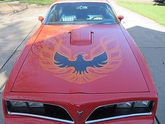 awesome 1978 Pontiac Trans Am - For Sale View more at http://shipperscentral.com/wp/product/1978-pontiac-trans-am-for-sale-3/