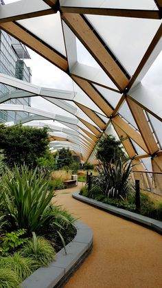 New gardens above Crossrail Canary Wharf