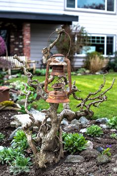 Squiggly branched bush holding a rusty garden junk lantern as garden art in a spring flower bed
