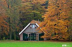 Je eigen groepsaccommodatie, midden in het bos in De Bult.