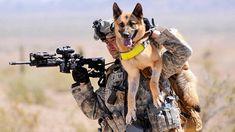Soldier's Best Friend