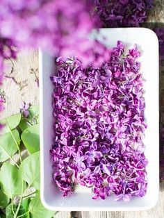 Homemade perfume - how to make your own unique fragrance. Diy Beauty Makeup, Beauty Hacks, Hair Beauty, Homemade Perfume, Natural Cosmetics, Makeup Trends, How To Dry Basil, Natural Beauty, Lilac