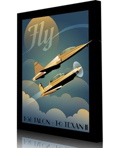 Share Squadron Posters for a 10% off coupon! Fly T-6 and T-38 #http://www.pinterest.com/squadronposters/