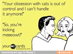 Obsession with cats / iFunny :)