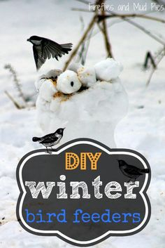 DIY Winter Bird Feeders -- great ideas to show our feathered friends some love! :-)