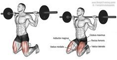 """Barbell kneeling squat. An isolation exercise. Target muscle: Gluteus Maximus. Synergistic muscles: Hamstrings, Adductor Magnus, and Quadriceps (Rectus Femoris, Vastus Lateralis, Vastus Medialis, Vastus Intermedius). For your own safety, please use a Smith machine or a power rack for this exercise. Note that this exercise activates your glutes more than does any other squat variation. Please read """"Comments and tips"""" on site to learn more."""