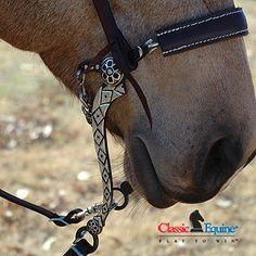 Diamond hackamore. No bits for my future horses!