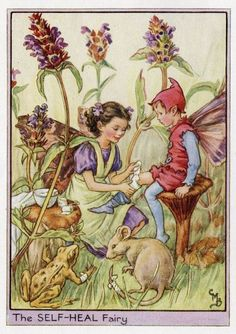 This beautiful Self-Heal Flower Fairy Vintage Print by Cicely Mary Barker was printed c.1950 and is an original book plate from an early Flower Fairy book