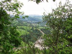Emiglia Romagna Vineyard, Outdoor, Environment, Home, Italia, Outdoors, Vine Yard, Vineyard Vines, Outdoor Games
