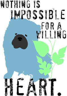 nothing is impossible for a willing heart. (chow chow)