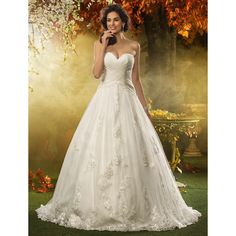 A-line Princess Sweetheart Court Train Appliques Tulle Wedding Dress