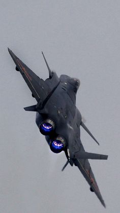 michell169:   J-20 - British Eevee