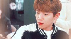 Gif Boyfriend, Baekhyun Gif, Exo Songs, Exo Fan, Exo Memes, Kpop Exo, Kpop Guys, Cute Korean, Chanbaek