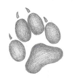 Wolf Paw Print Tattoo Sketch | Tattoobite.com
