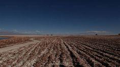 https://flic.kr/p/ESct9Z | #Chile #Atacama Surcos del salar. | Grooves in the salt flat°° チリ、アタカマ。塩原の溝。