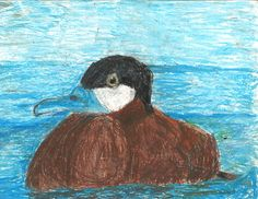 The 2013 Florida Junior Duck Stamp of Sarah Garfield, 9, honorable mention in Group 1, grades K-3. DDWS photo