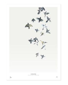 Birds  /  Flying high