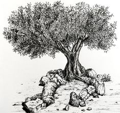 How to Draw (Realistic) Trees with Pen & Ink - Ran Art Blog Trees Drawing Tutorial, Landscape Drawing Tutorial, Landscape Drawings, Landscape Paintings, Tree Drawings Pencil, Ink Pen Drawings, Art Drawings Sketches, Nature Drawing, Shading Drawing