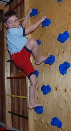 This kit contains 9 plastic climbing holds in one of four colors: blue, red, yellow and green, plus 18 T-nuts and 18 Bolts (suitable for 3/4 plywood). All holds are of different shapes and sizes. Rock climbing provides a tremendous total body workout. This activity involves most of the major muscles helping children to stay in shape and develop muscle strength, flexibility, coordination and mental focus. Climbing Wall can be a great addition to the indoor jungle gym or a stand-alone pie