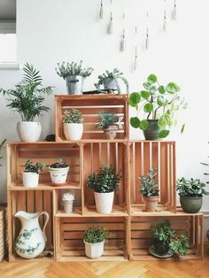 Crates in my living room corner. Crates as plant stands. Succulents and other indoor plants. You are in the right place about Suculentas Interior, Diy Home Decor, Room Decor, Room Art, Diy Casa, Crate Furniture, Furniture Ideas, Furniture Online, Diy Indoor Furniture