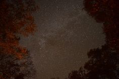 Looking straight up from our cabin in the woods up near Wellston, MI.  The night sky was very dark.  The time lapse is on Youtube under my channel  https://www.youtube.com/watch?v=2aYeKsY58MU&list=UUHDR-KHAxDd5SHrhuayqpcQ