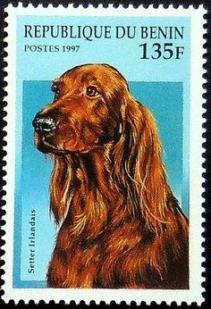 Irish Setter Dog Setter irlandais Framed by PassionGiftStampArt
