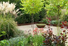 aménagement petit jardin dans l'arrière-cour avec de jeunes arbres, des graminées d'ornement et du sable