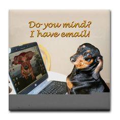 Funny - dog dachshund email