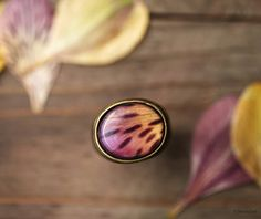 Wild Orchid statement ring - Alstromeria - Yellow and pink - Safari - Bloom collection by BeautySpot  (R065) via Etsy
