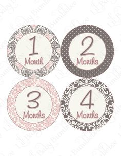 Monthly Onesie Stickers Baby Month Stickers by LittleBabyBumblebee