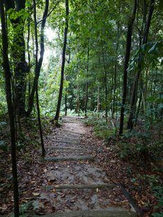 Imbiah Trail, Sentosa, Singapore