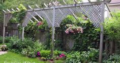 These photos from local garden tours show creative ways to improve the privacy in a garden and add some vertical interest. Some use freestanding structures with…