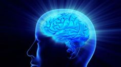 Modern day telepathy? Scientists develop method for reconstructing thoughts - http://www.scoop.it/t/science-news/p/1765309522/modern-day-telepathy-scientists-develop-method-for-reconstructing-thoughts