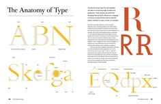 The Anatomy of a Thousand Typefaces – Florian Schulz – Medium Font Anatomy, Letter Anatomy, Anatomy Of Typography, Type Anatomy, Typography Love, Typography Letters, Type Design, Book Design, Web Design