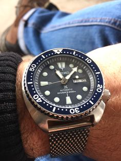 Seiko turtle in blue