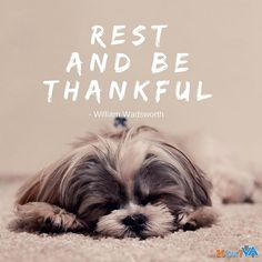 Rest and be thankful. - William Wadsworth #20four7va #MotivationMoment #applytoday #careers #workfromhomeph #virtualassistant #onlinejobs #homebasedjobs #hiring #wfh #restday #quotes