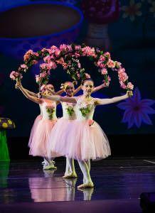 31 Best Alice in wonderland ballet images