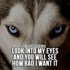 Best 25+ Wolf pack quotes ideas