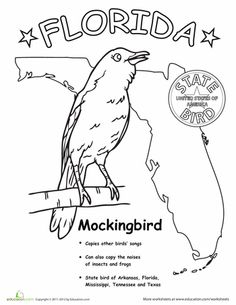 Florida State Symbols Coloring Pages Florida Symbols Facts