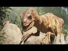Ken Ham Takes You on a Walk-Through at the Creation Museum