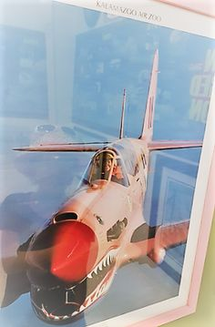 Tell us your own story of who is the Super women in the Pink Airplane. #superhero #superness #aviation #womeninaviation  Air Museum in Palm Springs California