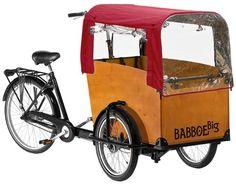 Transporting children on a bike.