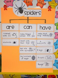 A Place Called Kindergarten: spider research.would be good for guided reading NF graphic organizer Kindergarten Science, Science Classroom, Kindergarten Classroom, Teaching Science, Science Activities, Preschool, Classroom Decor, Halloween Activities, Thinking Maps