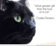"cat quotes. ""What greater gift than the love of a cat."" - Charles Dickens"
